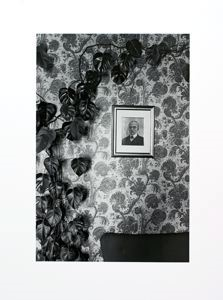 "Image of Climbing Plant and Portrait, Assisi from the ""Eva Rubinstein"" Portfolio"