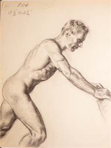 Image of Male nude